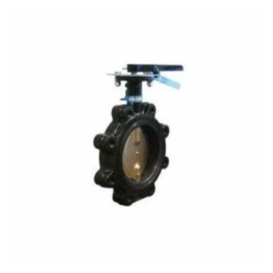 Picture for category Cast Iron Butterfly Valves
