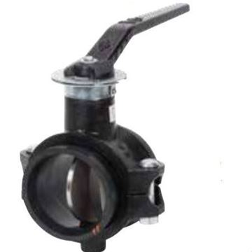 Picture of 67LPN2020 2 LOW PROFILE GROOVED BUTTERFLY VALVE 200 PSI 316 SS DISC