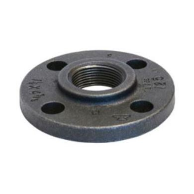 Picture for category Cast Iron Threaded Flanges