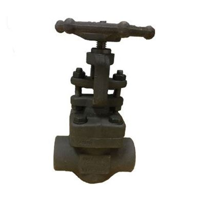 Picture for category Forged Steel Gate Valves