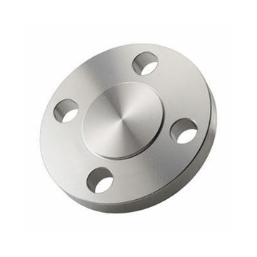 Picture of 6 300 316L SS RF BLIND FLANGE