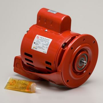 Picture of B&G 169038 1/3HP MOTOR F/60 SERIES PUMP 683328 69038
