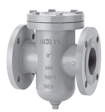 Picture of 4 150 CS FLANGED SS 1/4 PERF KECKLEY BASKET STRAINER SGFV