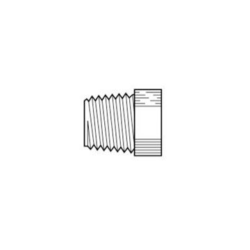 Picture of P8HPL PARBARB 1/2MPT POLY HEX HEAD PLUG PARPP8HPL